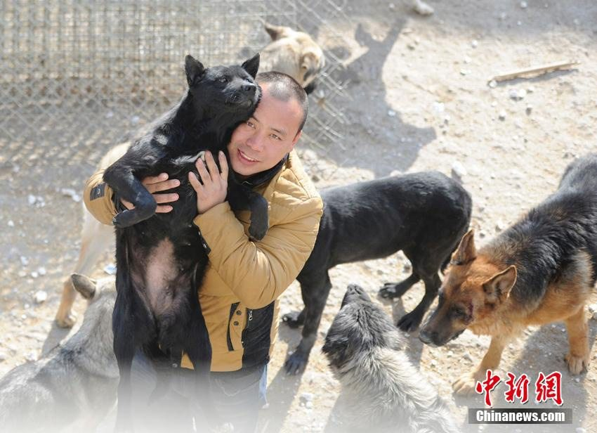 chinese_millionaire_loses_dog_and_rescues_2000_more_2