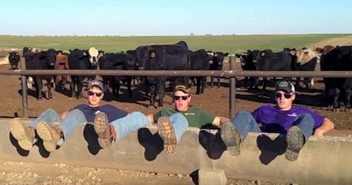 Farmers Create A Parody Of Pop Songs Hilariously Show What It S Like To Be A Farmer Hangoutlife