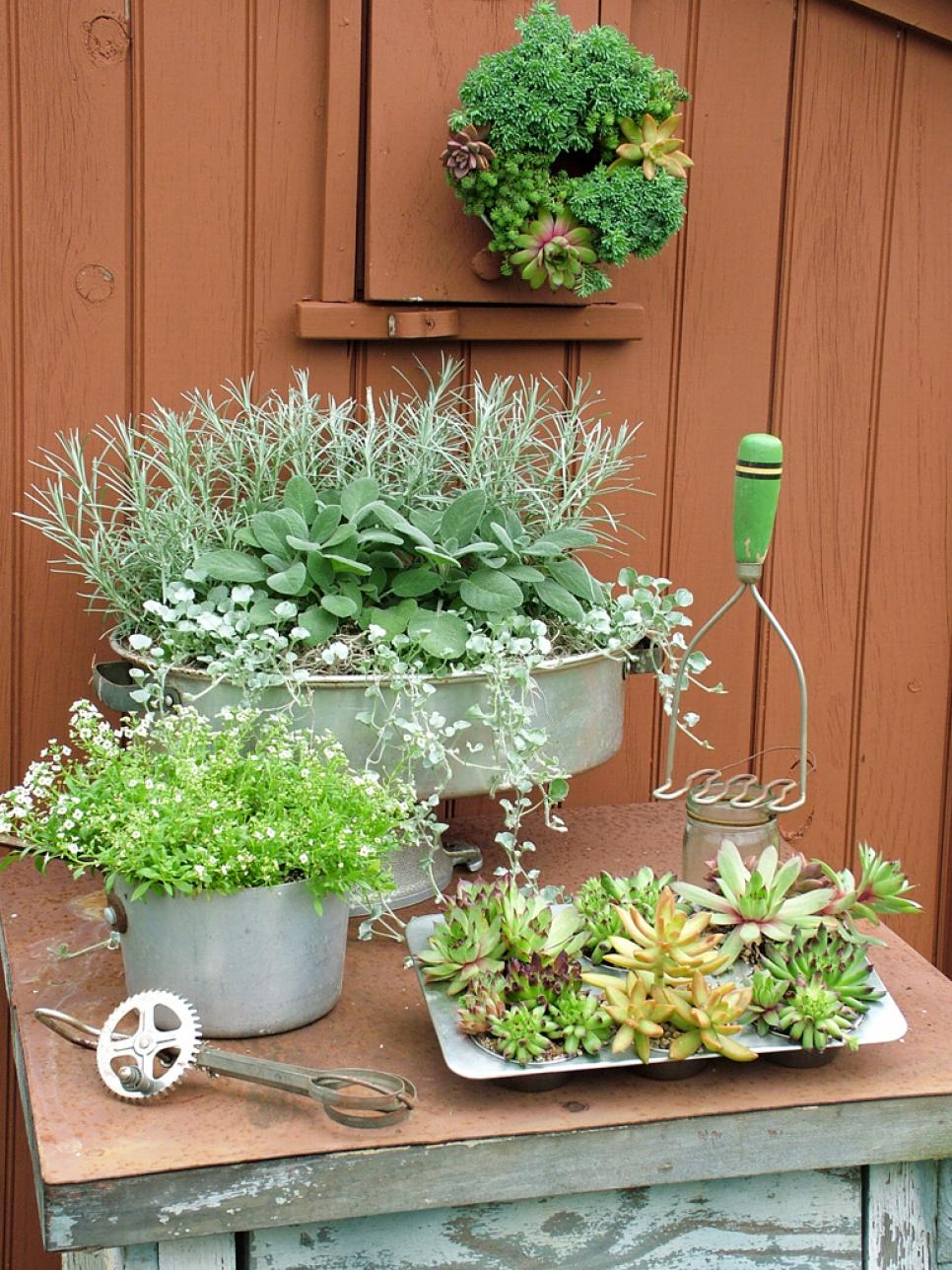 Original-Nancy-Ondra_unique-container-gardens-kitchen-containers-s3x4.jpg.rend_.hgtvcom.966.1288
