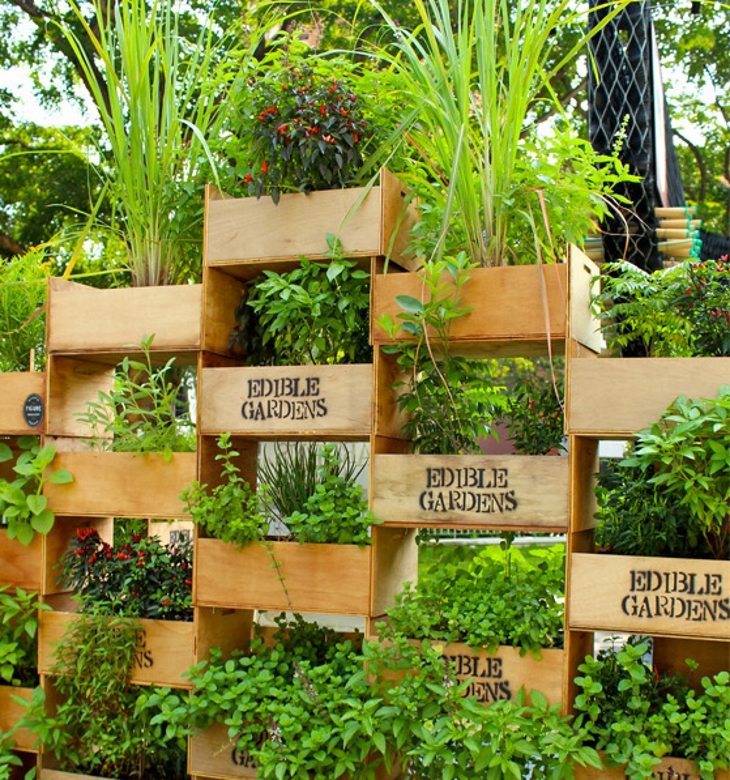 tinybackyard-edible-crates