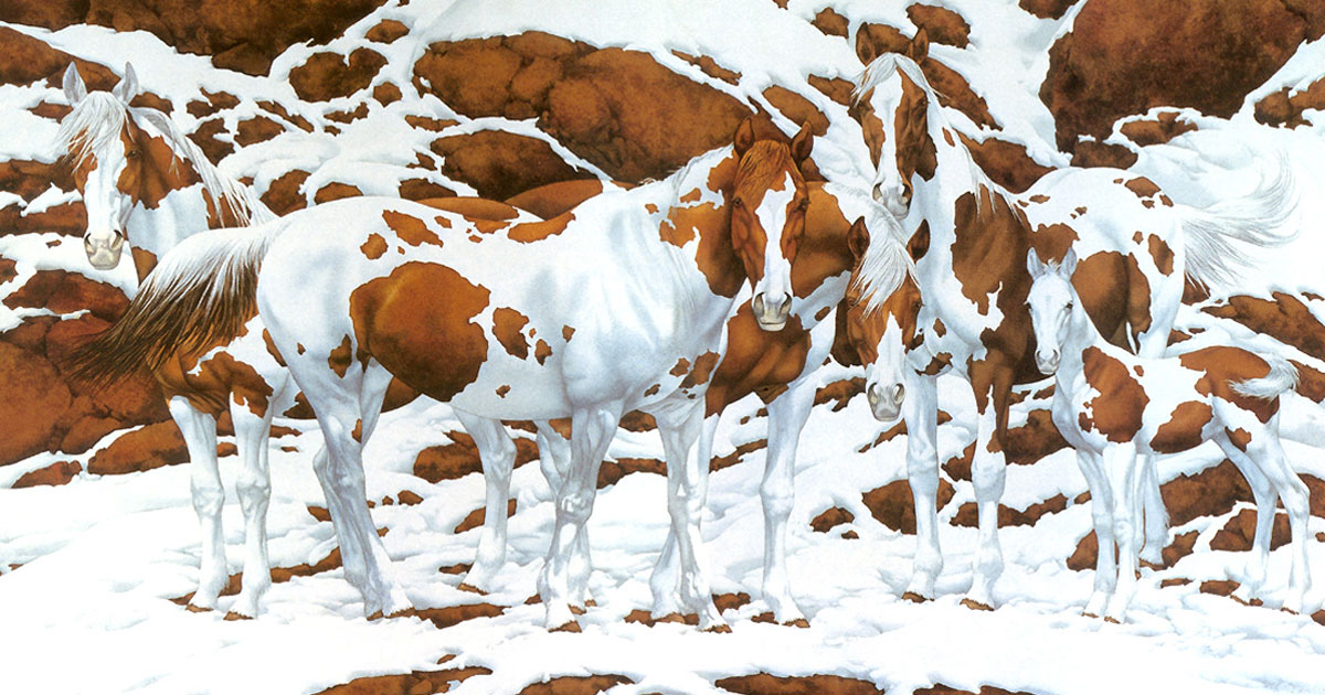 how_many_horses_do_you_see_featured