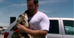 soldier_adopts_dog_and_brings_him_to_california_featured