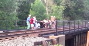 group_rescues_prenant_horse_stuck_on_railroad_featured