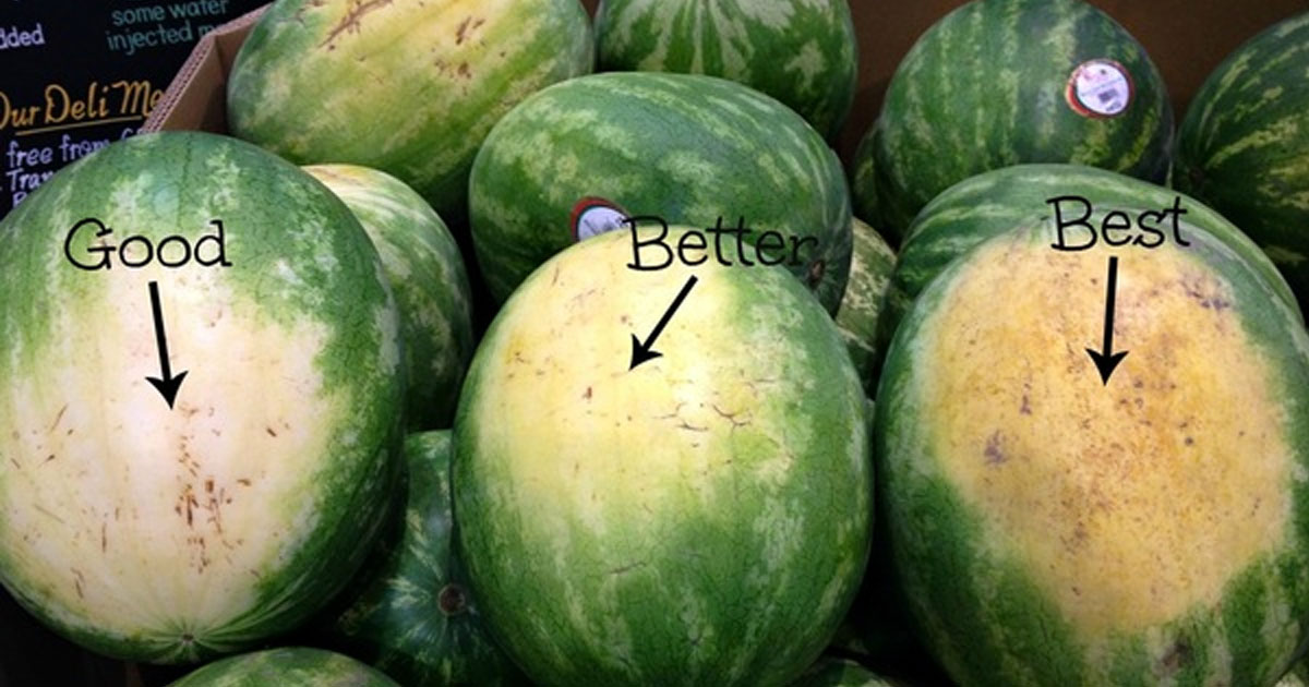 Image result for when watermelon ripe