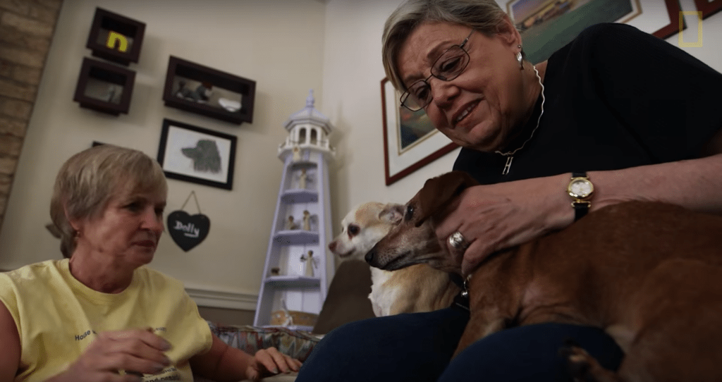 Woman opens up a retirement home for senior dogs