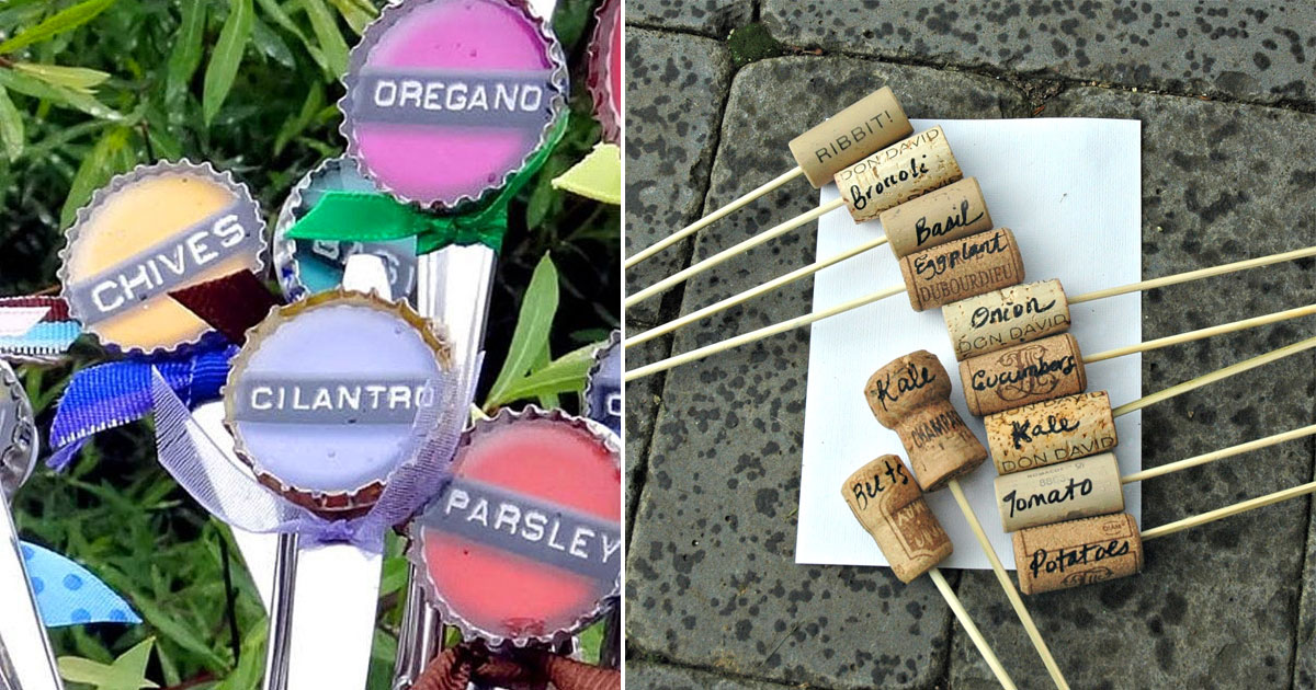 creative plant marker ideas that spice up your garden and make it ...