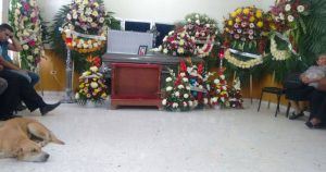 missing_dog_arrives_at_owners_funeral_featured