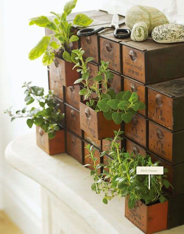 12 lovely indoor herb gardens that are perfect for any home