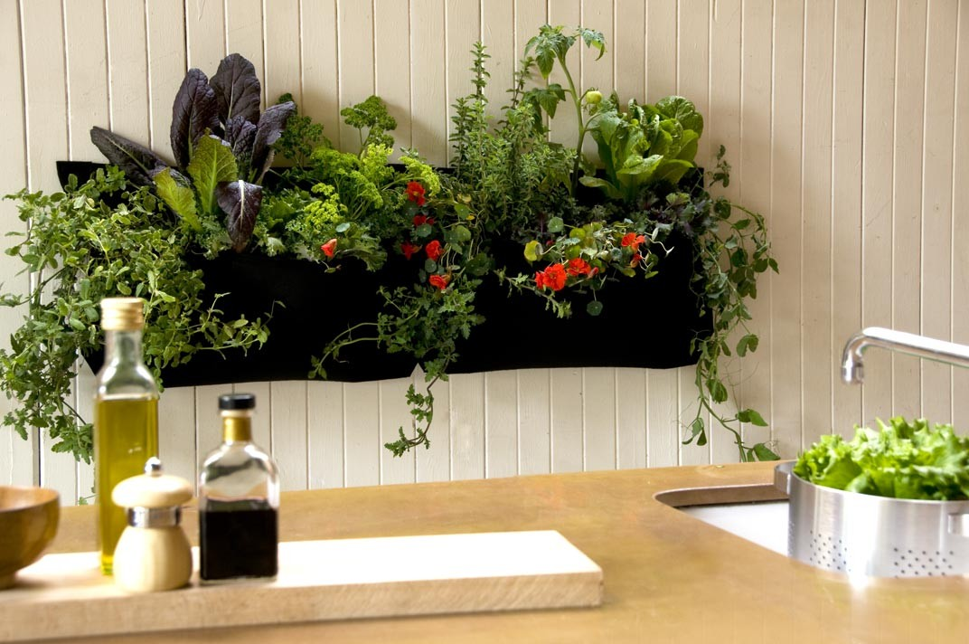 Indoor kitchen garden recycled plastic bottles awesome for House and garden kitchen photos