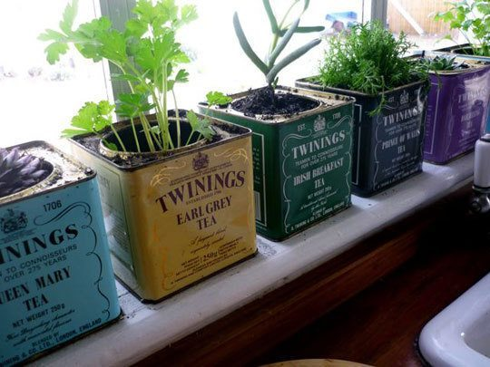Herb Garden Ideas Uk 12 lovely indoor herb gardens that are perfect for any home