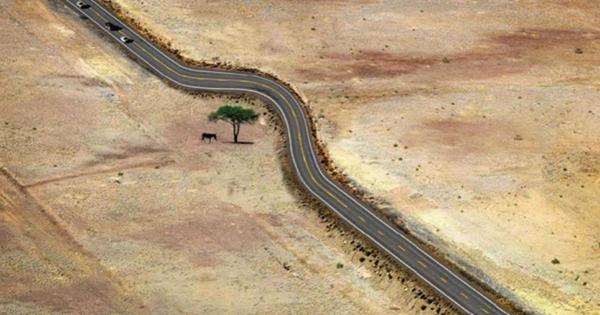 13 Photos That Show The Incredible Ways Mankind Has Respected Nature