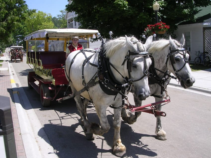 mackinacisland_carriage-850x637