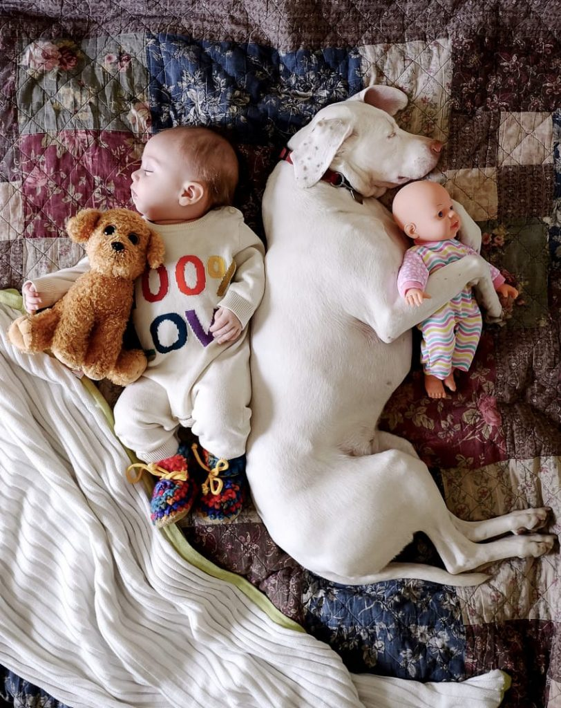 Baby and dog sleeping buds